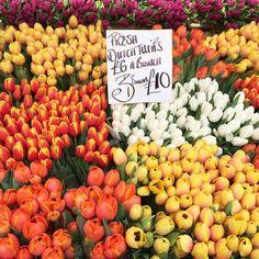 Columbia Road Flower market...