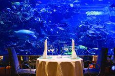 Restaurante Al Mahara, Burj al Arab, Dubai. Prepare-se para umas das mais espetaculares experiências gastronômicas.