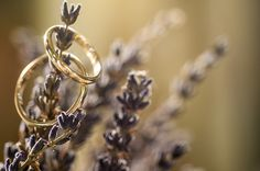 Beautiful wedding rings on lavender! Orthodox wedding in Athens, Greece. Photography by shoothebride.