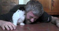 Isto é o Que Acontece Quando Alguém Se Deita No Chão Perto De Um Adorável Cachorrinho