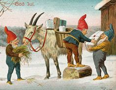 Goats with jultomte