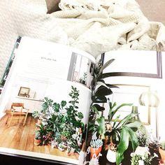 A little light reading... . . #plantbooks #plants #books #booksandplants #urbanjungle #urbanjunglebook