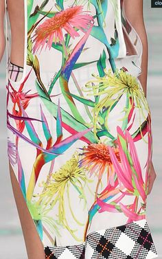 Just Cavalli SS14  inspired G.Levin / Touch of Eden 9 http://fqoto.com/ss2014-096-touch-of-eden-9.html