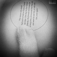 just finished reading -  C o l o r l e s s T s u k u r u T a z a k #murakami #harukimurakami  by Merve Öngören Constantini @mongoren Instagram photos | Websta