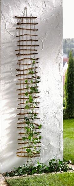 23 Functional Cucumber Trellis Ideas Guaranteed to Boost Your Harvest As a vining plant, a cucumber can grow all over the show. Training it up a cucumber trellis will guarantee less disease and damage, and an abundant harvest. Diy Trellis, Garden Trellis, Garden Beds, Trellis Ideas, Herb Garden, Garden Shrubs, Plant Trellis, Clematis Trellis, Garden Mural