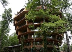 Hotel Nothofagus, Huilo-Huilo Biological Reserve, Chile. (Congress host) Help us bring indigenous leaders to our conservation congress by supporting our indiegogo campaign: http://www.indiegogo.com/projects/indigenous-leader-scholarships-latin-american-conservation-congress/x/1273897?c=home