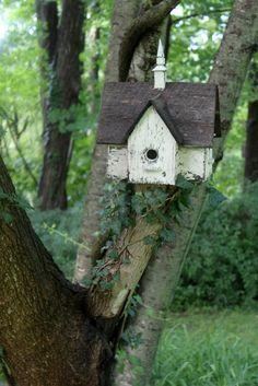 tuck birdhouses all around yard