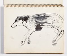 Diebenkorn, Ink wash with pen and ink on paper, Page 005 from Sketchbook # 20 [sleeping dog; layout: landscape orientation]