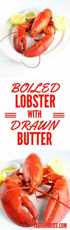 ... | Lobster on Pinterest | Lobster Rolls, Lobsters and Lobster Tails