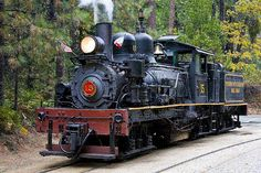 """Sugar Pine Railroad: Fish Camp, CA  Riding logger steam trains!  From March to Oct only, & they offer a """"moonlight special"""" - night time ride, steak & music"""