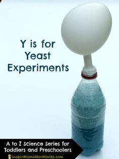 Y is for Yeast Experiments - conduct experiments to test what affects the growth of yeast