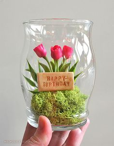 Mini Happy Birthday Tulip Terrarium in Recycled Glass | Flickr