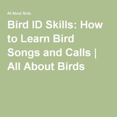 Bird ID Skills: How to Learn Bird Songs and Calls | All About Birds