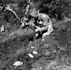 Private Thomas Hawkins, Royal Canadian Regiment, digging a slit trench near Motta, Italy, 3 October 1943. (item 1)