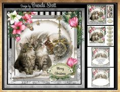 Kittens Watching It Snow by Brenda Scott Approx 8 x 8 Card topper, matching gift tag, decoupage, 5 sentiments plus a blank, blank insert…