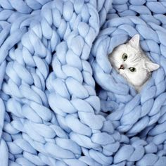 Merino Blanket in Powder Blue Color