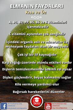 Elma neye iyi gelir ve özellikleri nelerdir? Elmanın faydalarını kısa ve öz olarak sizlerle paylaştık.