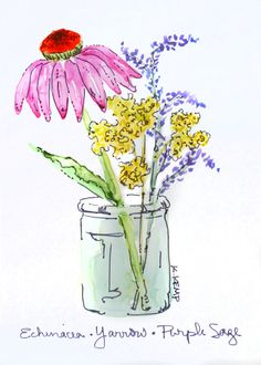 Original Watercolor, Pen and Ink Illustration, Purple Coneflower (Echinacea), Yarrow, and Purple Sage in Glass Jar - on Yupo Paper. All from plants growing on Wild Fern Farm. Great for small frames tucked into cozy spots on the wall or to sit on tabletops. Great gift!    Original 5 X 7 watercolor and ink on Yupo paper, which is an acid free polypropylene paper. The title is handwritten and the piece is signed. It will fit a standard 5 X 7 frame. Using Yupo paper creates a unique-looking…