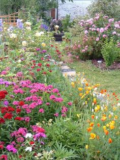 A colorful garden path with a majority of red, pink, yellow, and white flowers