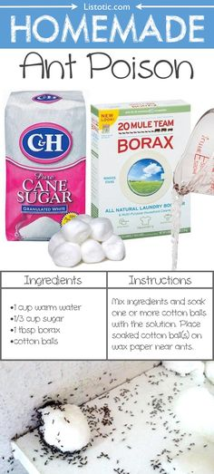 DIY Homemade Ant Killer for inside or outside made with just boric acid (borax) and sugar!