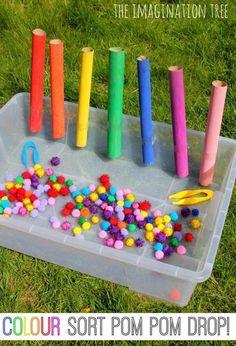 Color sorting fun!