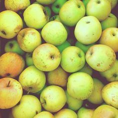 Fall at the farmers market   @designconundrum