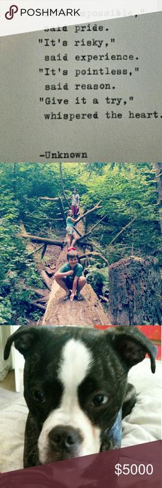 MORE PICS My kiddos on a huge log, we love our forests!  My sweet pup Coley-he got into the gelato again. ; ) Plus, my sister and I enjoying a winery. Other