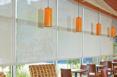 Solar Shades for Restaurant Windows Window Coverings, Window Treatments, Commercial Windows, Blinds For Windows, Windows Decor, Window Blinds, Window Roller Shades, Budget Blinds, Restaurant Interior Design