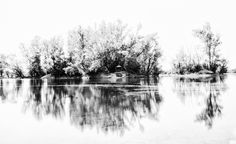 """Slovakia, Komjatice: Another World #PHOTOFRANO  Photography & FineArt by photofrano  """"Exposure📸 is just the beginning""""  #HDR #BW   #fb : fb.com/PHOTOFRANO  #blog : photofrano.wordpress.com  #portfolio : 500px.com/PHOTOFRANO Another World, Hdr, Wordpress, Fine Art, Landscape, Abstract, Artwork, Blog, Photography"""