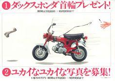 Honda Dax, Japan, 70er Jahre