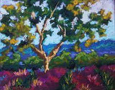 "Olive Tree by Mary Jane Erard Pastel ~ 16"" x 14"""
