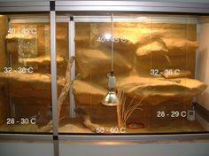 Climate data terrarium