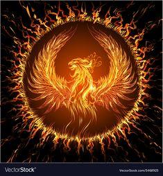 Collection of vector image of phoenix bird fire revival flight 25 EPS Phoenix Artwork, Phoenix Wallpaper, Phoenix Drawing, Phoenix Images, Tattoo Dragon And Phoenix, Phoenix Bird Tattoos, Phoenix Tattoo Design, Tattoos Phönix, Fenix Tattoos