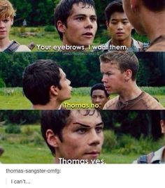 "I laughed for like 10 minutes at this<<<thank gosh I wasn't the only one thinking ""dang gally... Dose eyebrows ON POINT"