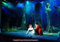 Theatre Royal Waterford, Ireland  Show: Into the Woods  Lighting Designer: Aidan McGrath
