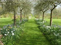 53 ideas for big garden inspiratie