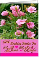 67th / Birthday / Wife / Pink Flowers Card by Greeting Card Universe. $3.00. 5 x 7 inch premium quality folded paper greeting card. Greeting Card Universe offers the largest selection of birthday cards on the web. Make this birthday a memorable one by sending a custom card. Allow Greeting Card Universe to handle all your birthday card needs this year. This paper card includes the following themes: Madeline Allen, Digital-Art, and SmudgeArt. Set your birthday cards apart this y...