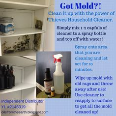 Mold is a terrible, disgusting thing that requires a powerful cleaner to remove it! This is why I chose to use the Thieves Household Cleaner! Who needs to be exposed to a bunch of toxic chemicals on top of being exposed to mold?  For more information or to sign up with Young Living go to thehectichomemaker.com