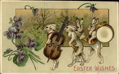 Bunny Musicians With Bunnies