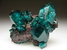 Dioptase crystals / Mineral Friends <3