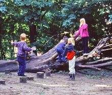 International School Grounds Alliance - New international group forms to address an increasingly sedentary and risk-averse generation of children disconnected from nature.