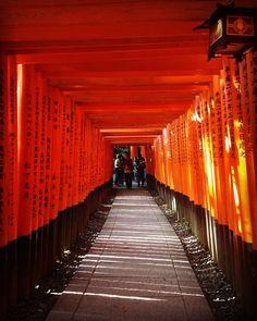 Em meio aos torii do Santuário xintoísta Fushimi-Inari Taisha  #kyoto #japan #japao #quioto #viagem #travelbloggers #travellers #travelgram #fushimiinaritaisha #fushimiinari #travel4fun #instagood #instragram #traveling #nationalgeographic #NatGeo #clubsocial #missãovt #MonicanaAsia
