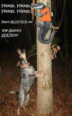 Gator Hater