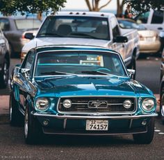 A Brief History Of Ford Trucks – Best Worst Car Insurance Ford Mustang Fastback, Mustang Cars, 1967 Mustang, Classic Mustang, Ford Classic Cars, Car Ford, Ford Trucks, Us Cars, Sport Cars