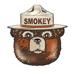 Enamel Smokey Bear Head Pin