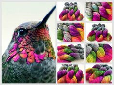 Bird is the Word colorway by Witch Candy Crochet Yarn, Knitting Yarn, Knitting Patterns, Crochet Patterns, Expression Fiber Arts, Yarn Inspiration, Spinning Yarn, Yarn Stash, Sock Yarn