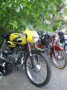 Flandria Rekord 50cc 2 stroke | Flickr - Photo Sharing!