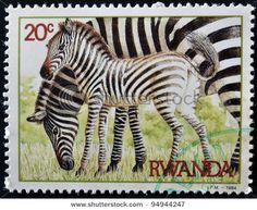 Zebra stamp from Rwanda (1984)