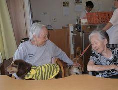 Pet Acceptable Nursing Home Sakura no Sato