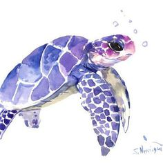 Sea Turtle painting, original watercolor painting, 12 X 9 in, blue purple sea world art from ORIGINALONLY on Etsy. Animal Paintings, Animal Drawings, Art Drawings, Sea Turtle Painting, Sea Turtle Art, Sea Turtle Drawings, Sea Turtle Tattoos, Illustration, Watercolor Animals